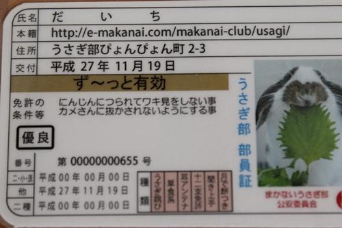 IMG_5644うさぎ部