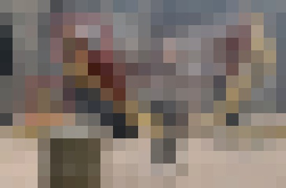 151102-2-005.jpg