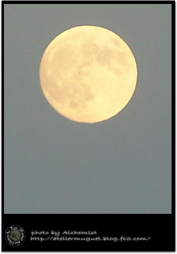 n9-sm.jpg