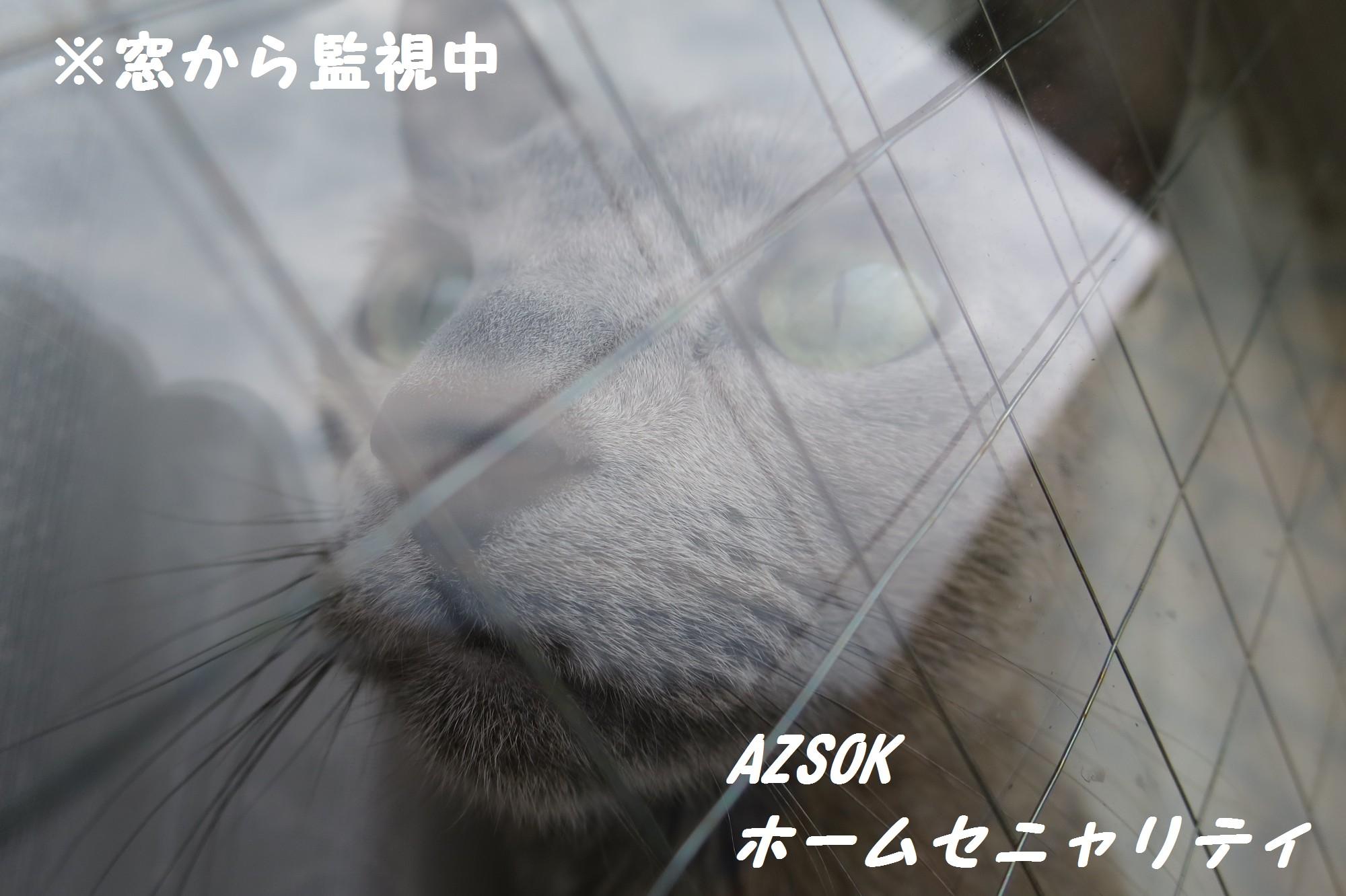 vol428