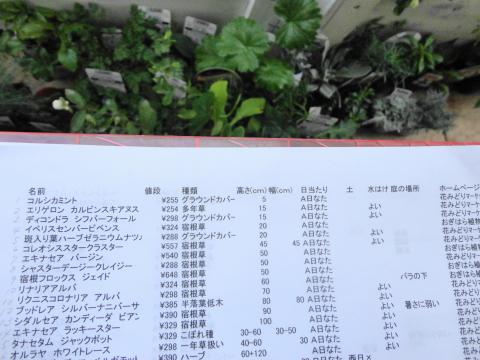 20151118宿根草リスト