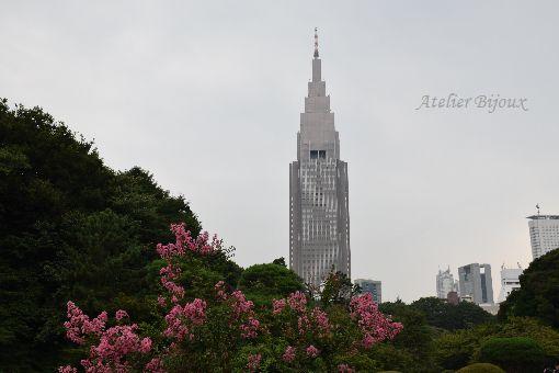 023-新宿御苑-サルスベリ-ドコモタワー