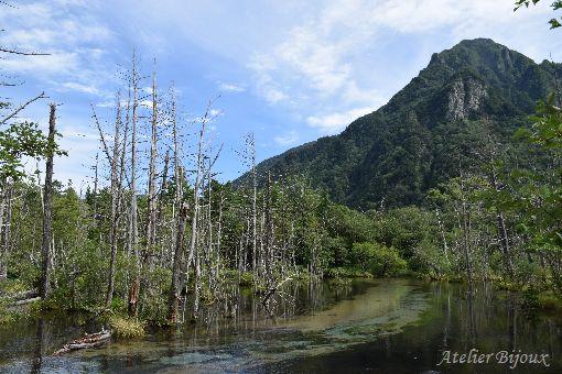 078-岳沢湿原