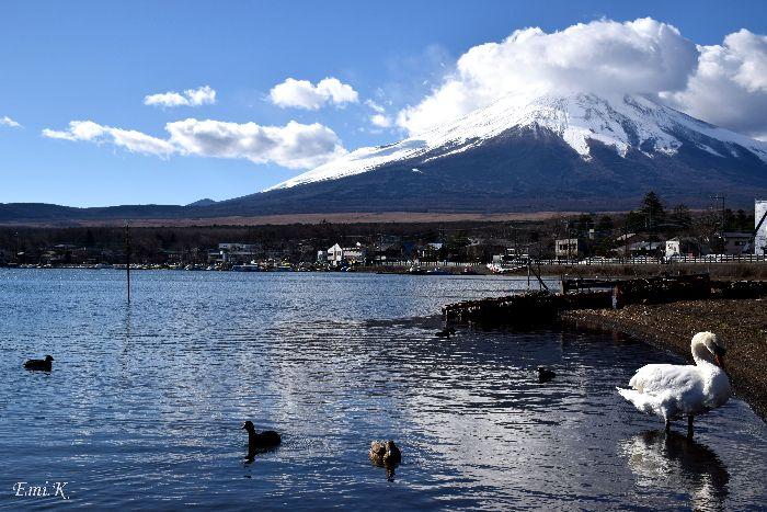 014-New-Emi-富士山-白鳥