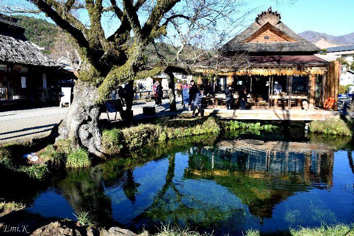 051-New-Emi-忍野八海湧池