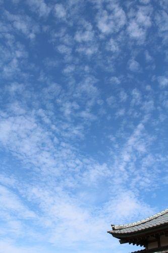 sky-20150921-01.jpg