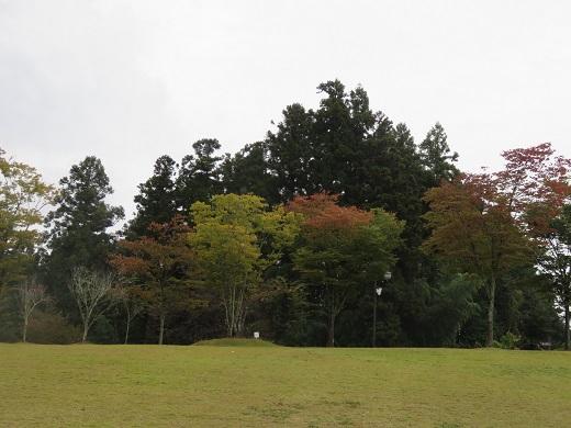 人道の丘公園?