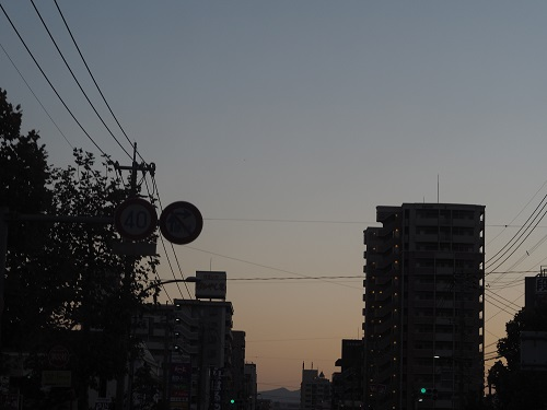 PA250010.jpg