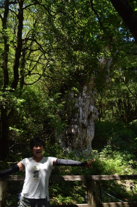 22縄文杉のテンション