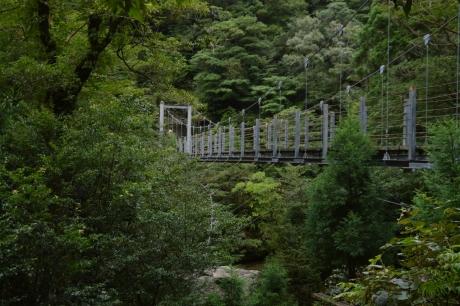 6サツキ吊り橋