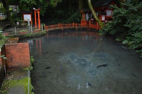 7川の上の川上神社