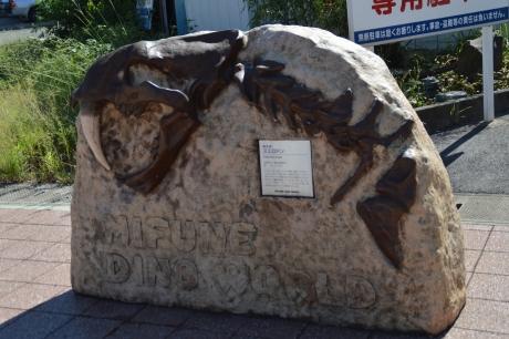 3なんか面白そうな化石