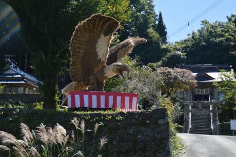 12飛び立つ鷹