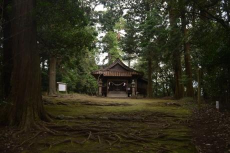 8雨もり神社