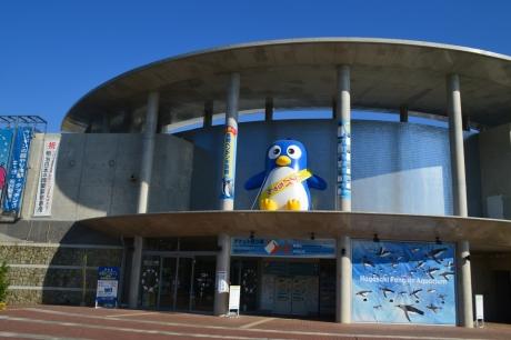 1ペンギン水族館