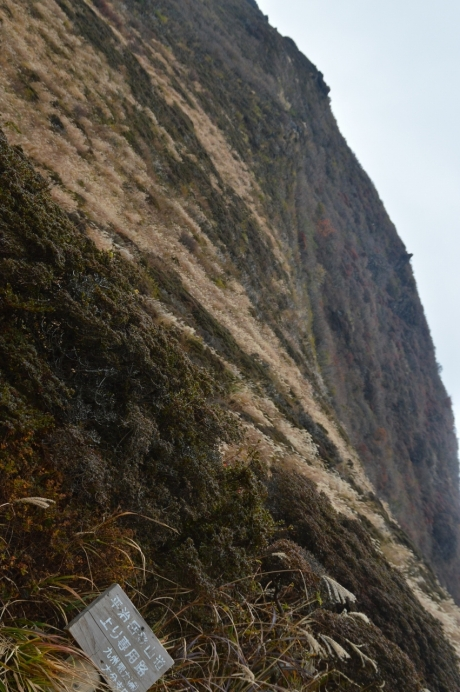 17.5登り専用