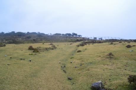 7草原を歩く