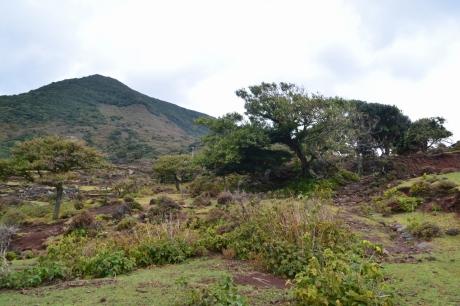 26野崎火山火口へ