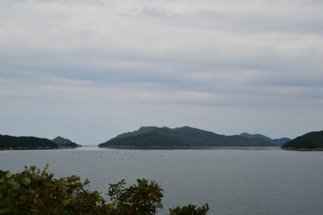 14島山島は行かない