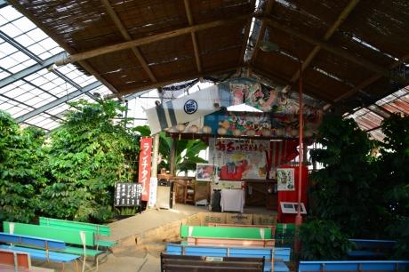11コーヒー農園