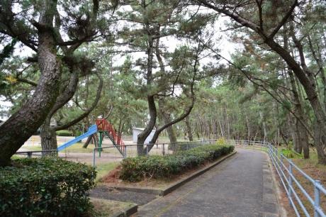 7生の松原