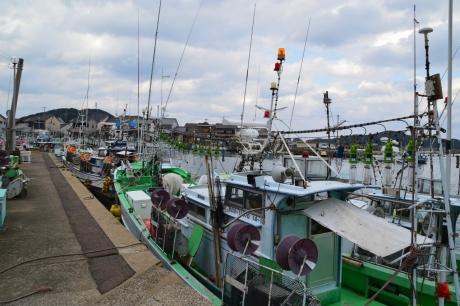 13イカ釣り舟が多い