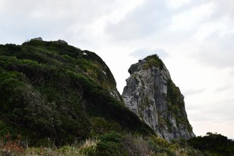 25猿岩げっちゅ