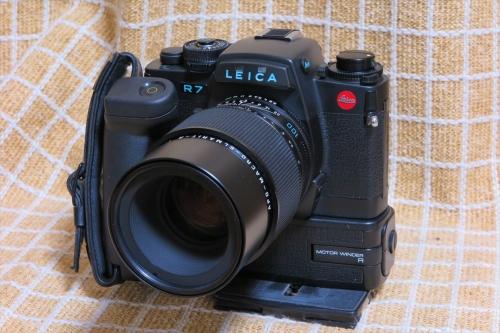 LEICA R7 56 (AME100mmF2.8)