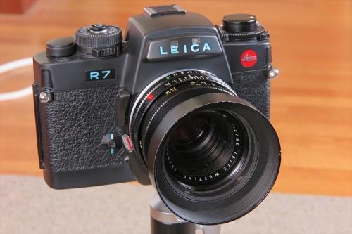LEICA R7 66-1 (SUMIMICRON-R F2 50mm)
