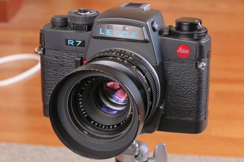 LEICA R7 66-2 (SUMIMICRON-R F2 50mm)