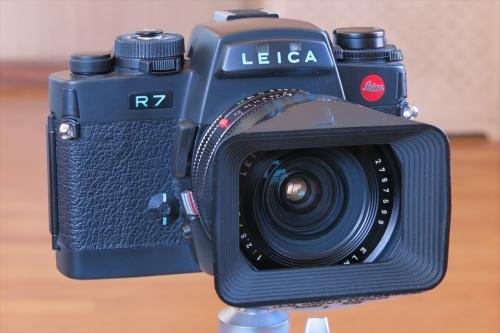 LEICA ELMARIT-R 24mm 12-3