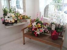 戸田公園 美容室 BRISK (ブリスク)のブログ-2013-03-21 12.59.53.jpg2013-03-21 12.59.53.jpg