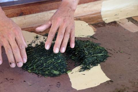 18巾着田:手揉み煎茶