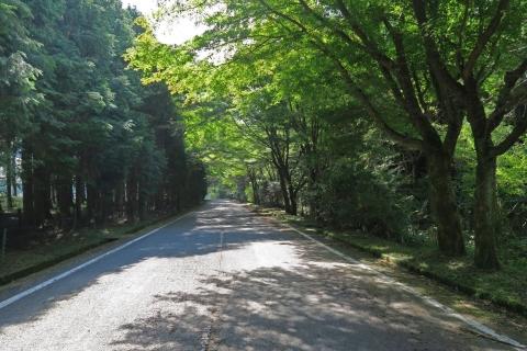 10a新富士山五合目へ大好きな道