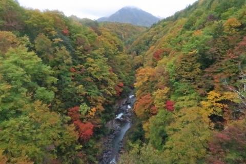 49中津川渓谷