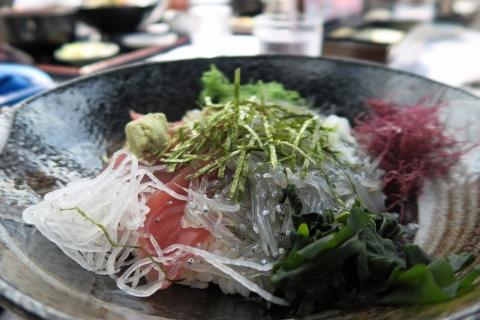 11浜辺:マグロと生シラス丼