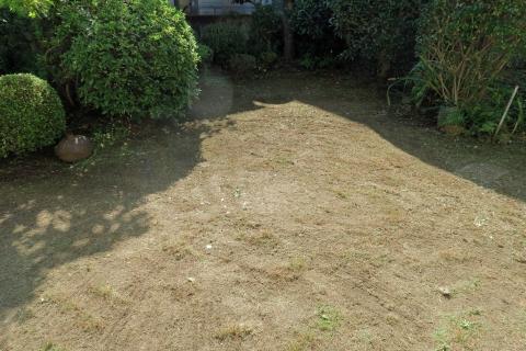 庭掃除after1
