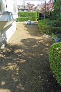 庭掃除after3