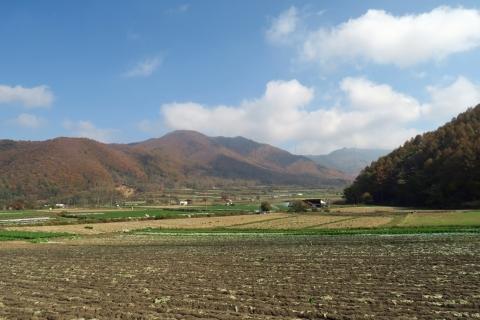 21川上村