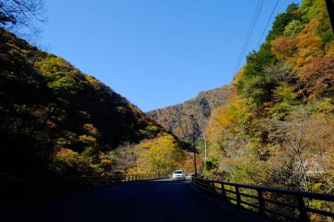 16柳沢峠へ