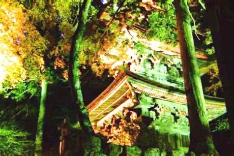 2横蔵寺紅葉 ライトアップ