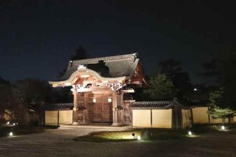 大覚寺ライトアップ1