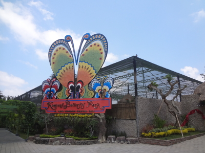butterflypark1.jpg