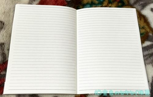 キャンドゥ インコスケジュール帳 枠線ノート
