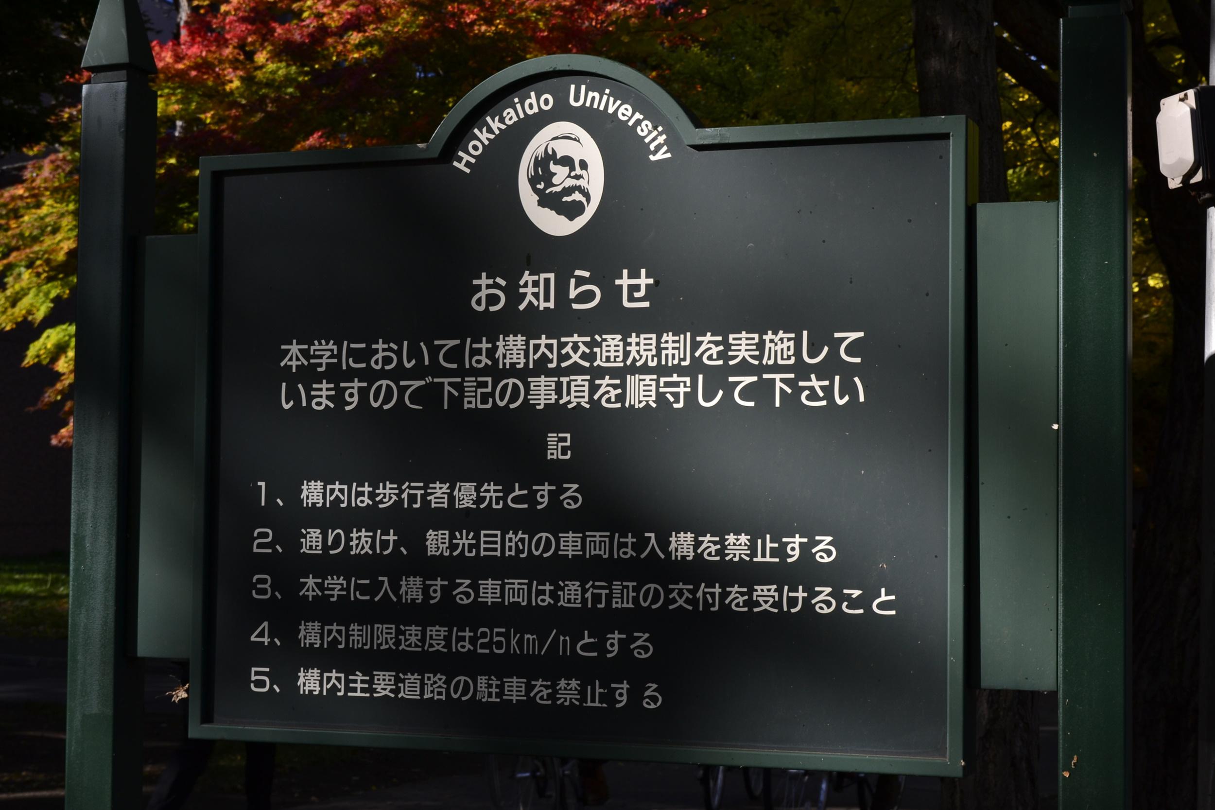 2012北大銀杏並木撮影行1回目 (1)