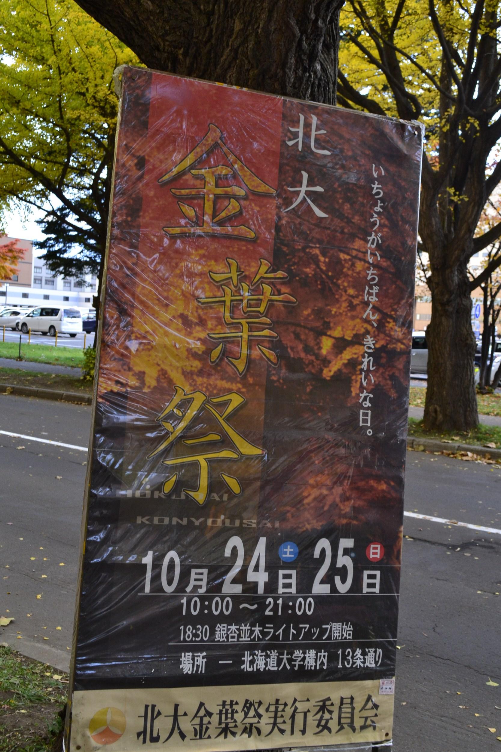 2012北大銀杏並木撮影行1回目 (2)