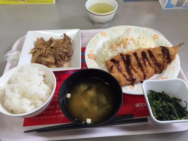 2012北大銀杏並木撮影行1回目 (42)