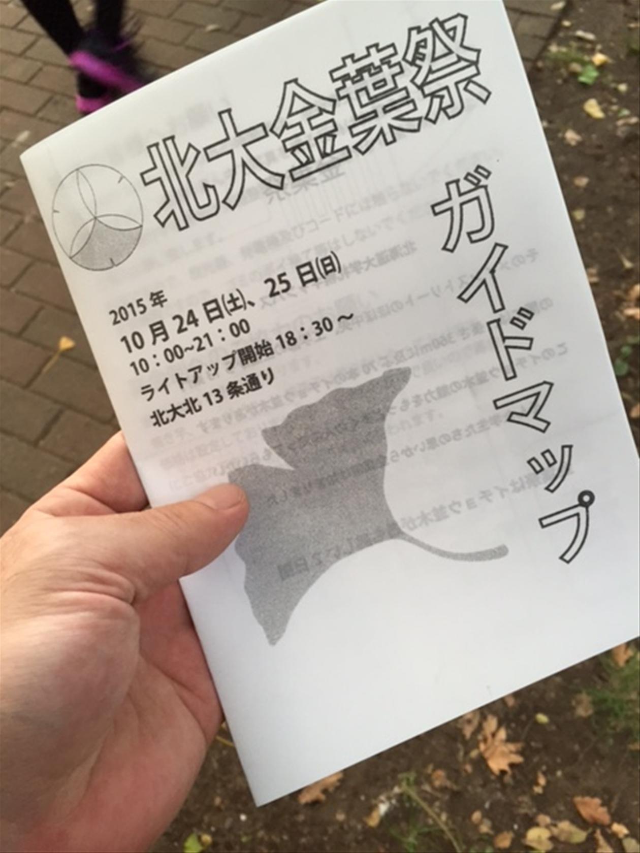 2015北大銀杏並木ライトUP (2)_R