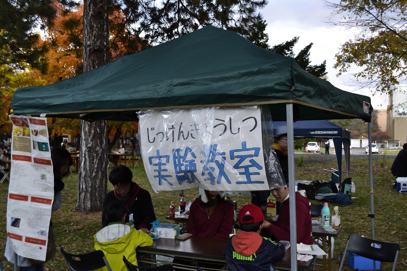 2015北大銀杏並木ライトUP (8)_R