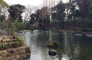 戸越公園-2